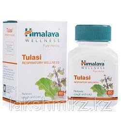 """""""Тулси"""" от компании """"Гималаи"""", 60 таб (Tulsi Himalaya)"""