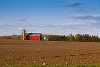 Покраска ферм