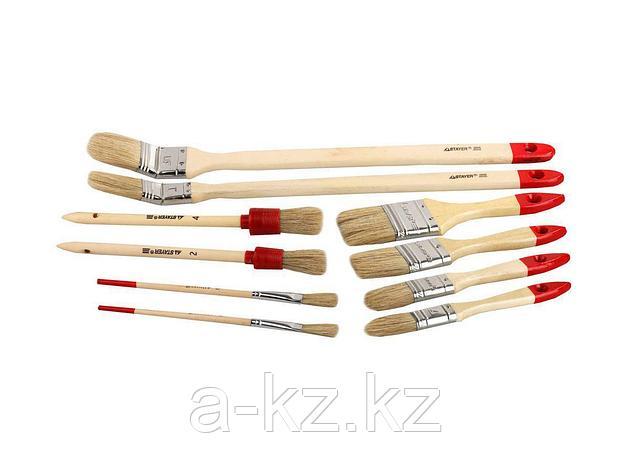 Кисть плоская малярная набор STAYER 0163-H10, UNIVERSAL-STANDARD, светлая натуральная щетина, деревянная ручка, 10 шт., фото 2