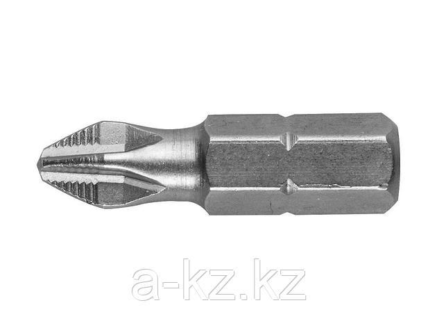 Биты для шуруповерта STAYER 26201-2-25-02, хвостовик C 1/4, PH №2, 25 мм, 2 шт., фото 2