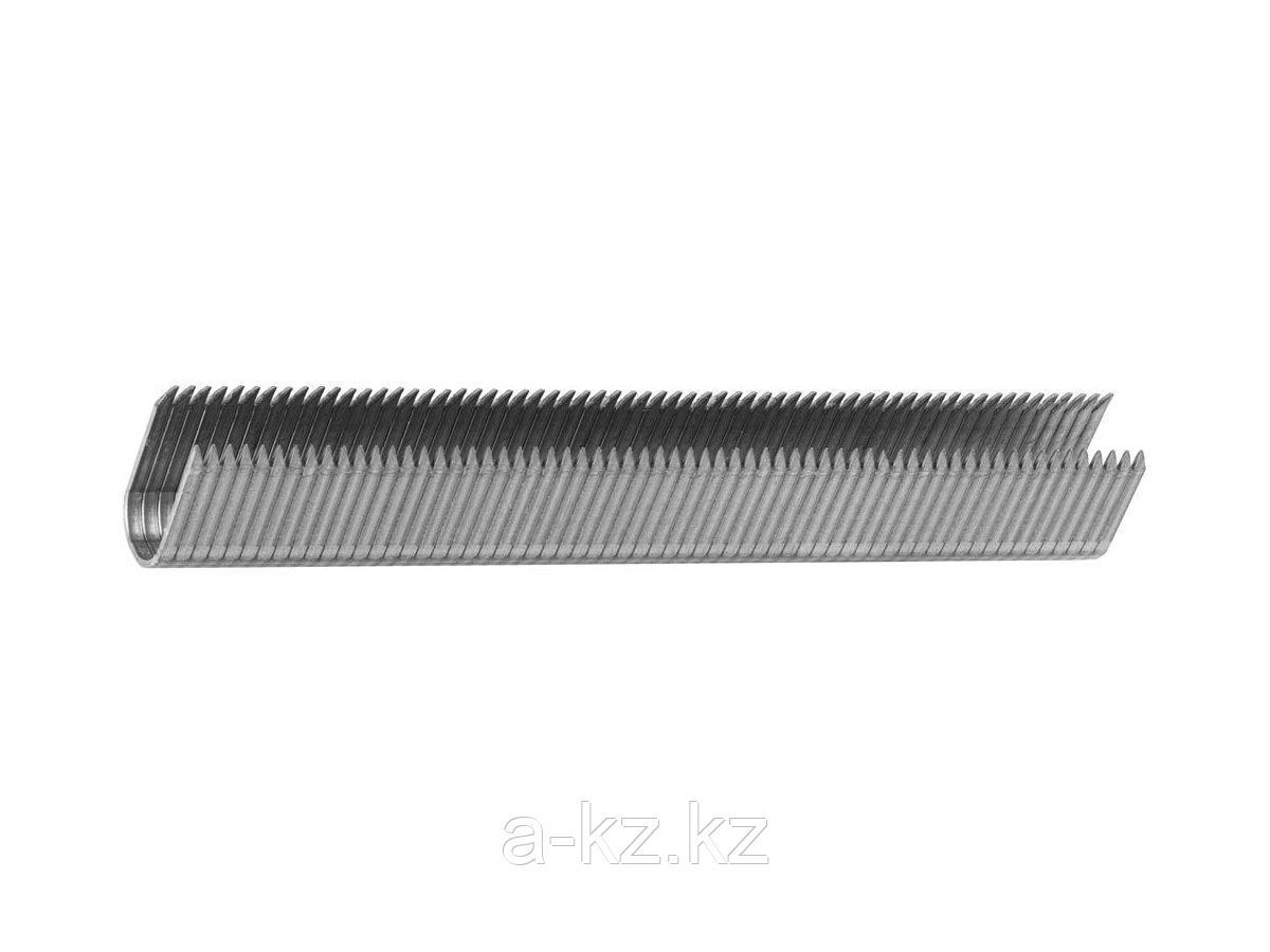Скобы кабельные, ЗУБР ЭКСПЕРТ , закаленные, тип 36, 14мм, 1000шт, 31612-14_z01