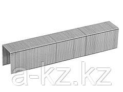 Скобы для степлера механического ЗУБР 31620-06_z01, ЭКСПЕРТ, закаленные, тип 53, красные, 6мм, 1000шт.