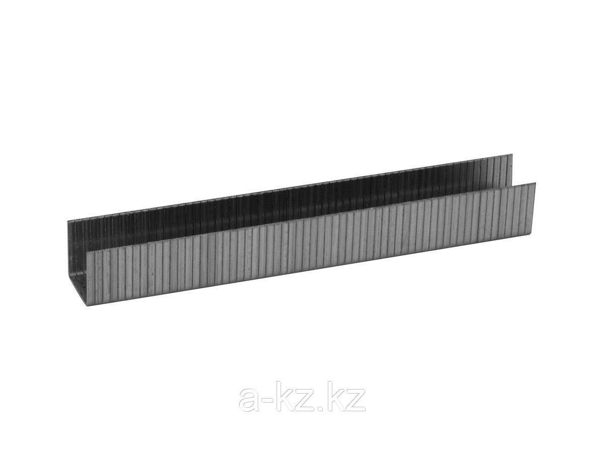 Скобы для степлера механического ЗУБР 31630-10_z01, ЭКСПЕРТ, закаленные, тип 140, зеленые, 10мм, 1000шт.