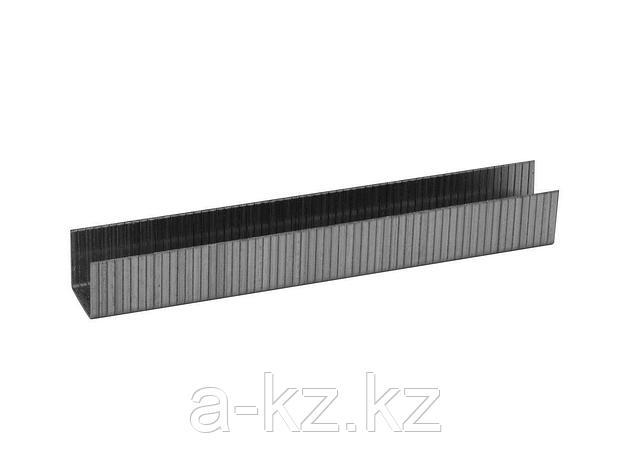 Скобы для степлера механического ЗУБР 31630-10_z01, ЭКСПЕРТ, закаленные, тип 140, зеленые, 10мм, 1000шт., фото 2