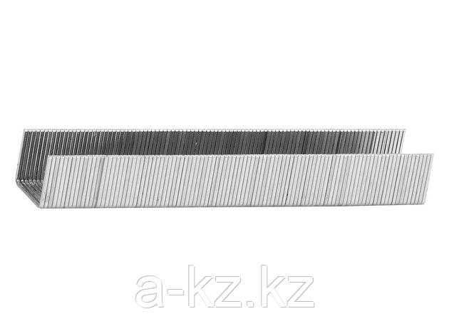 Скобы для степлера механического STAYER 3160-12, PROFI, закаленные, тип 53, красные, 12мм, 1000шт., фото 2