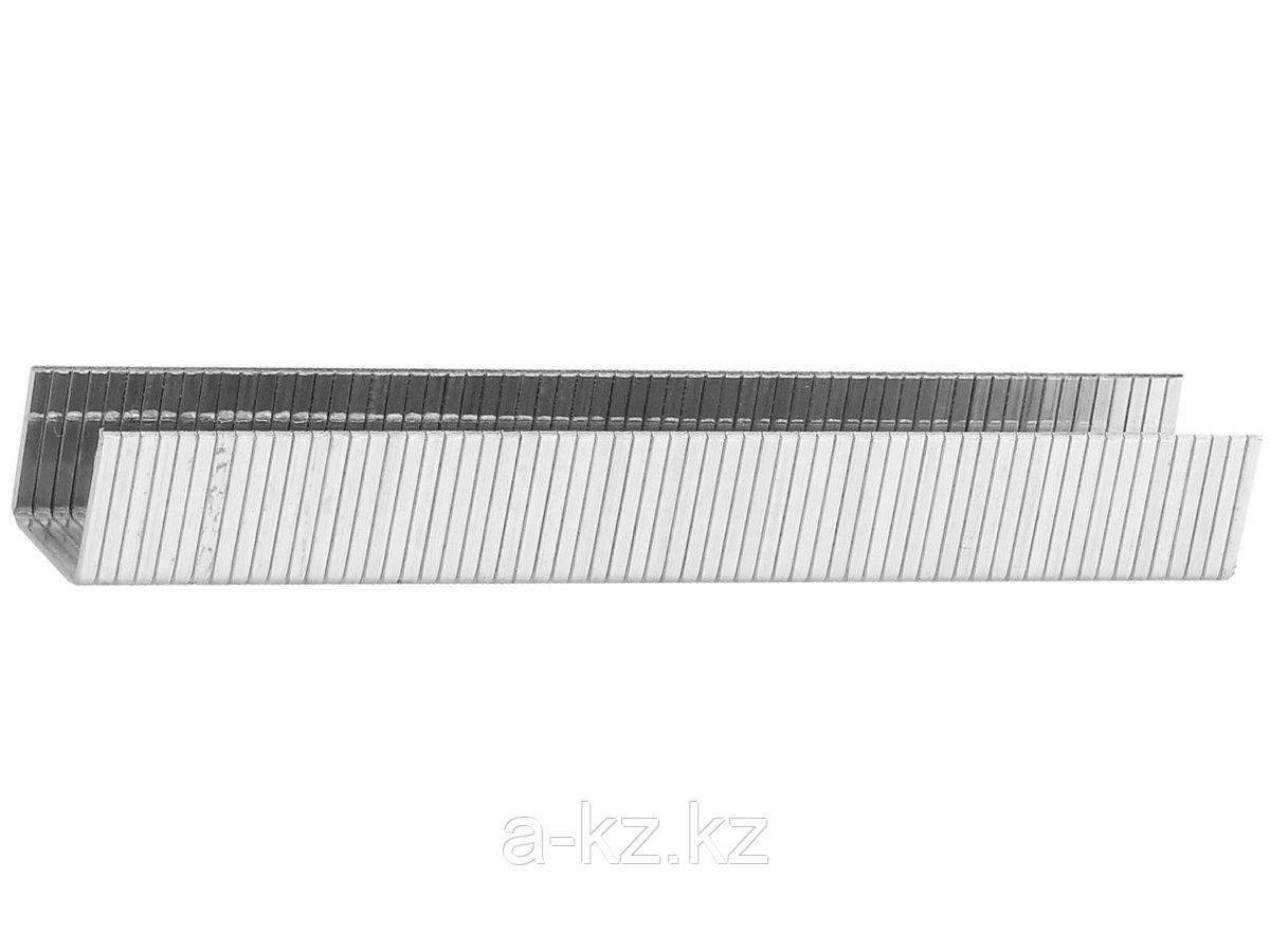 Скобы для степлера механического STAYER 31610-08, PROFI, закаленные, тип 140, зеленые, 8мм, 1000шт.