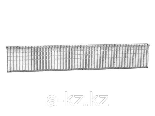 Гвозди для степлера механического, STAYER PROFI закаленные, тип 300, 16мм, 1000шт, 31614-16, фото 2