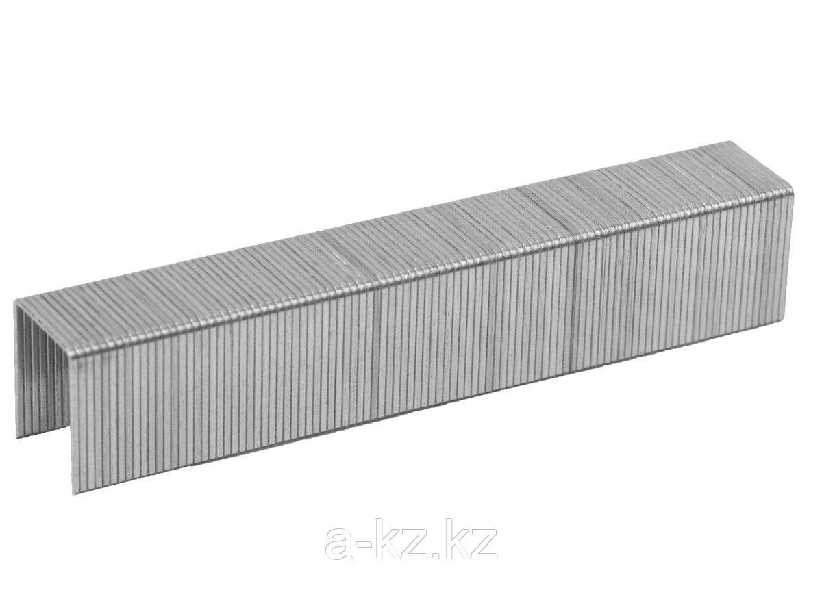 Скобы для степлера механического ЗУБР 31620-14-5000, ЭКСПЕРТ, закаленные, тип 53, красные, 14мм, 5000шт.