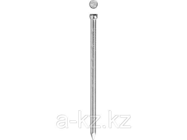 Гвозди финишные ЗУБР 3069-20-60, оцинкованные, 60 х 2.0 мм, 100 шт., фото 2