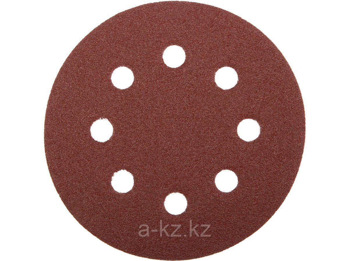 Круг шлифовальный на липучке ЗУБР 35560-115-060, МАСТЕР, универсальный, из абразивной бумаги на велкро основе, 8 отверстий, Р60, 115 мм, 5 шт.