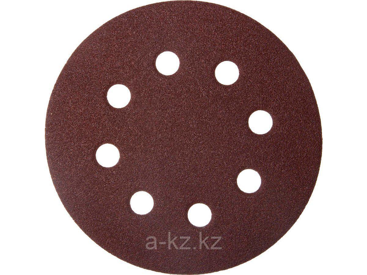 Круг шлифовальный на липучке ЗУБР 35560-115-100, МАСТЕР, универсальный, из абразивной бумаги на велкро основе, 8 отверстий, Р100, 115 мм, 5 шт.