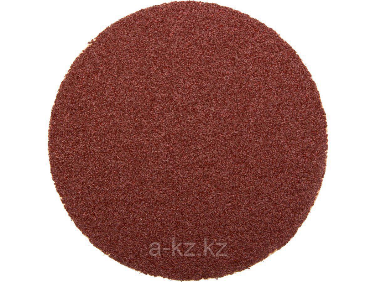 Круг шлифовальный на липучке ЗУБР 35561-115-080, МАСТЕР, универсальный, из абразивной бумаги на велкро основе, без отверстий, Р80, 115 мм, 5 шт.