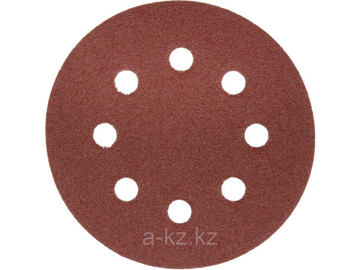 Круг шлифовальный на липучке ЗУБР 35562-125-080, МАСТЕР, универсальный, из абразивной бумаги на велкро основе, 8 отверстий, Р80, 125 мм, 5 шт.