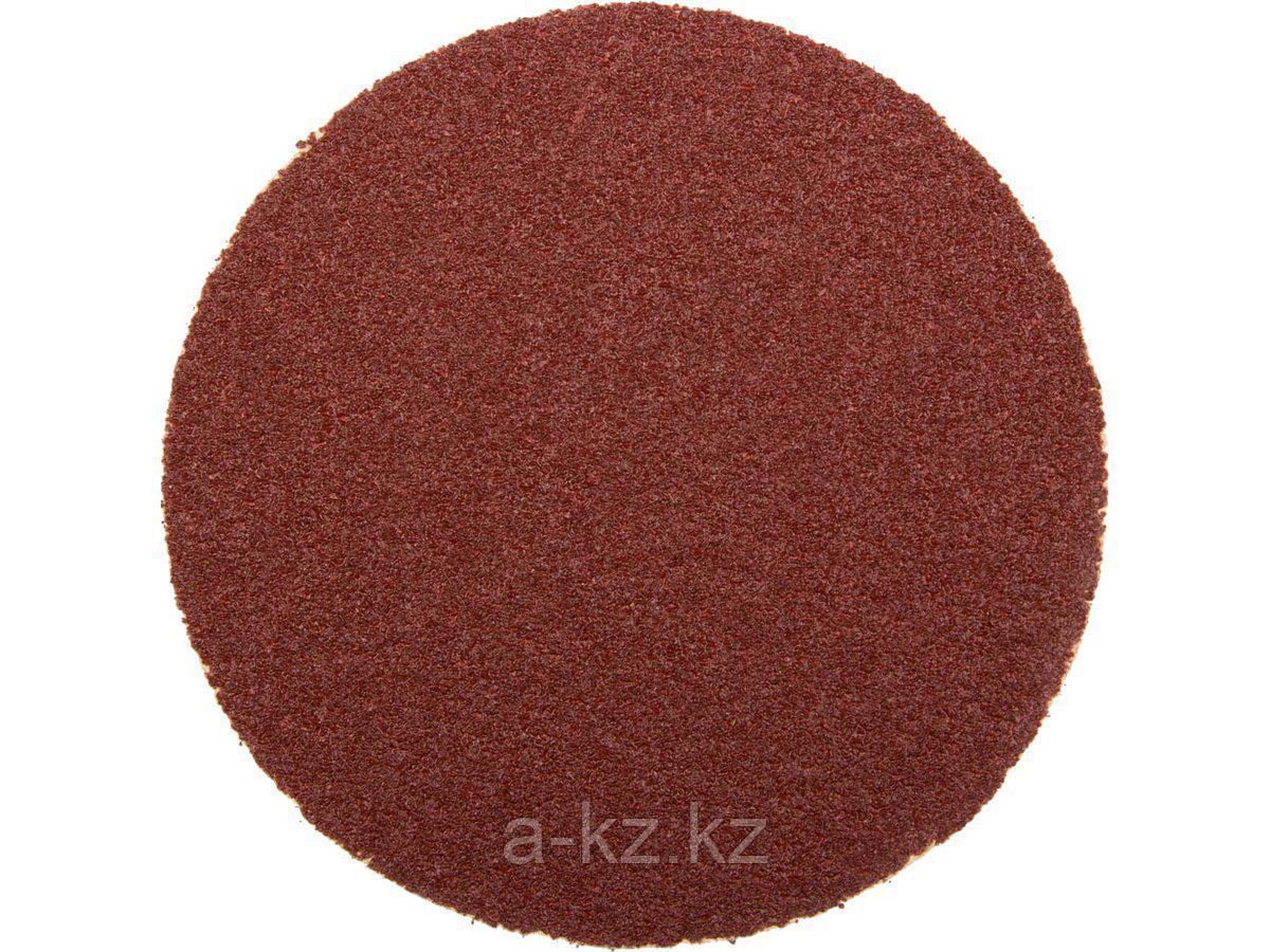 Круг шлифовальный на липучке ЗУБР 35563-125-060, МАСТЕР, универсальный, из абразивной бумаги на велкро основе, без отверстий, Р60, 125 мм, 5 шт.