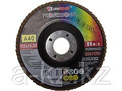 Круг шлифовальный лепестковый Луга 3656-125-40, абразивный  , 125 х 22,23 мм, зерно P40