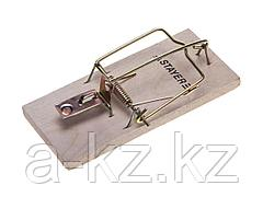 Мышеловка STAYER STANDARD, деревянное основание, малая, 40501-S