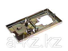 Мышеловка STAYER MASTER, металлическое основание, средняя, 40490-M