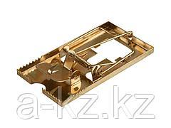 Мышеловка STAYER MASTER, металлическое основание, малая, 40490-S