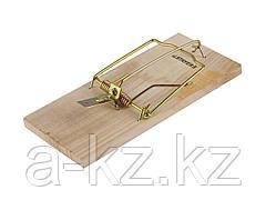 Крысоловка STAYER STANDARD, деревянное основание, 40501-L
