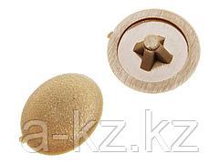 Заглушка декоративная ЗУБР под шуруп, цвет сосна, шлиц №2, ТФ6, 40шт, 4-308156-4