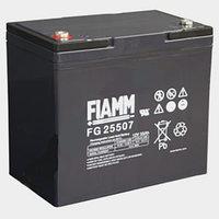 FIAMM FG 25507