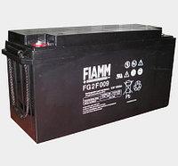 FIAMM FG 2F009, фото 1