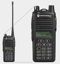 Motorola P180