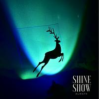 "Световое шоу ""Shine Show"""
