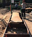 Распил древесины, фото 2
