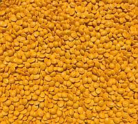 Мастербатч желтый Polycolor Yellow 04017 W