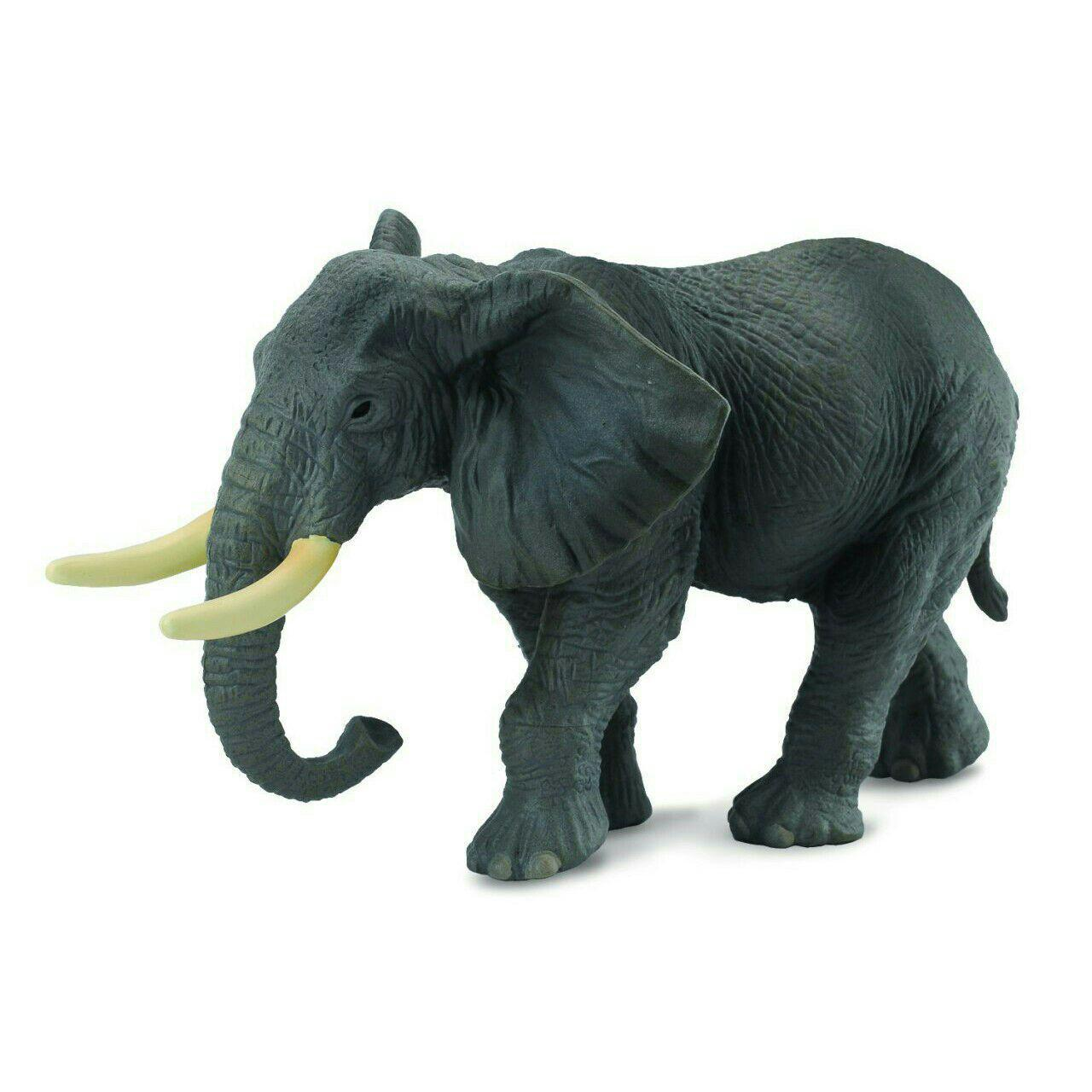 Collecta Фигурка Африканский слон, 15 см