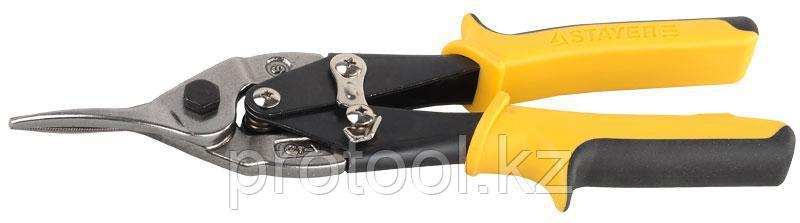 STAYER Ножницы по металлу HERCULES, прямые, Cr-Mo, 250 мм, серия Professional, фото 2