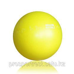 Гимнастический мяч 65 см для коммерческого использования (FT-GBPRO-65)