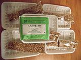 Зерна пшеницы с комплектами для проращивания 5шт по 50гр, 250г, фото 2