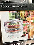 Дегидратор (сушилка для овощей), фото 2