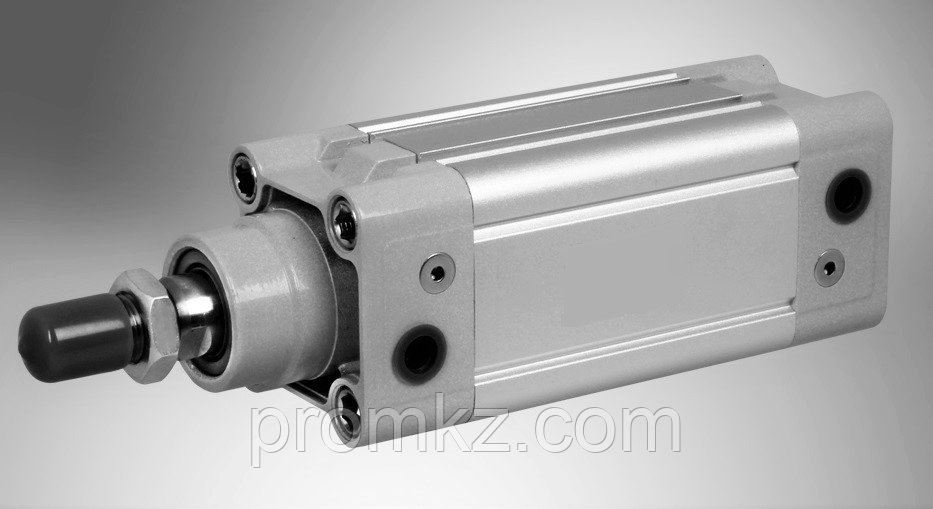 Пневмоцилиндр DNC 32X80