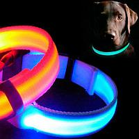 Ошейник для собак светодиодный USB (Синий)