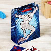 """Пакет подарочный вертикальный с наклейками """"Великий Человек-Паук"""", фото 1"""