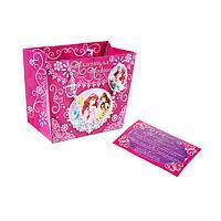 """Пакет-сумка """"Маленькая модница"""", Принцессы, + """"Советы для принцессы"""""""
