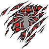 Футболка unisex с принтом «Spider»
