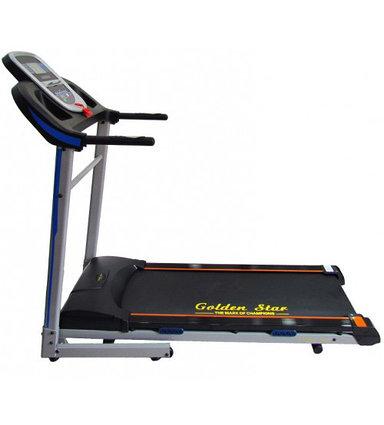 Спортивная беговая дорожка Golden Star 1300