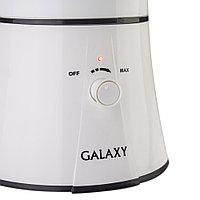 Увлажнитель воздуха Galaxy GL 8004, фото 2