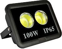 Прожектор ZILED COB100W,AC 85-265V, 6500K