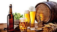 Как приготовить пиво в домашних условиях с помощью пивоварни Bavaria?