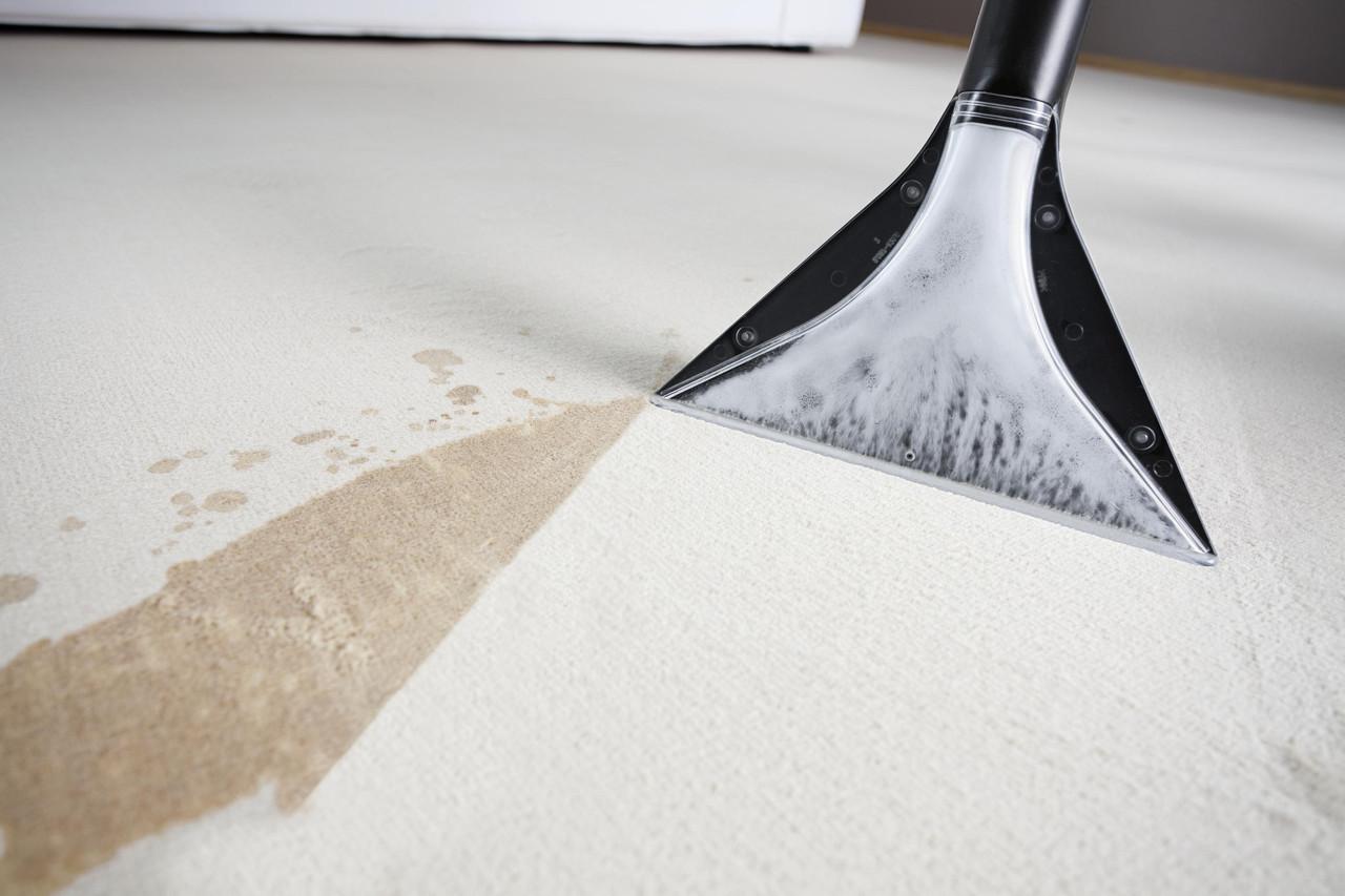 Чистка ковров паром