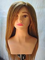 Голова манекен учебная с торсом 95% натуральный, 65-70см