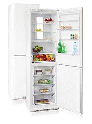 Холодильники Бирюса NO FROST