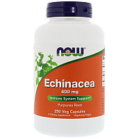 Эхинацея пурпурная, 400 мг, 250 капсул. Now foods