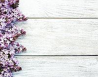 "Фотофон ""Сирень на белом"" - 65х57 см"