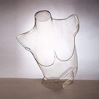 Женский полуторс для белья прозрачный «В движении» - DTFB-002